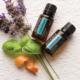 utilizările blendului Aromatouch