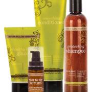 salon essentials haircare system